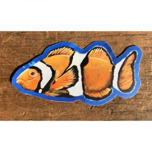 Clownfish Sticker - Designed by Artist Kimberly Heil