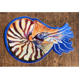 Nautilus Sticker - Designed by Artist Kimberly Heil